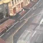 Тёлка со штангой на улице